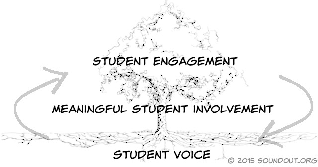 Student Voice Meaningful Student Involvement Student Engagement Process
