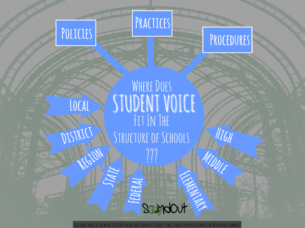 Student Voice in the Structure of Schools for SoundOut.org