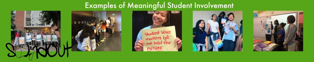 These are examples of Meaningful Student Involvement